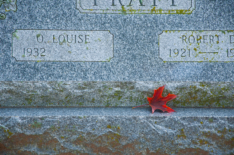 Leaf on gravestone