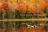 Bliss Pond near Calais, Vermont