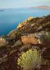Coastline, Santorini, Greece