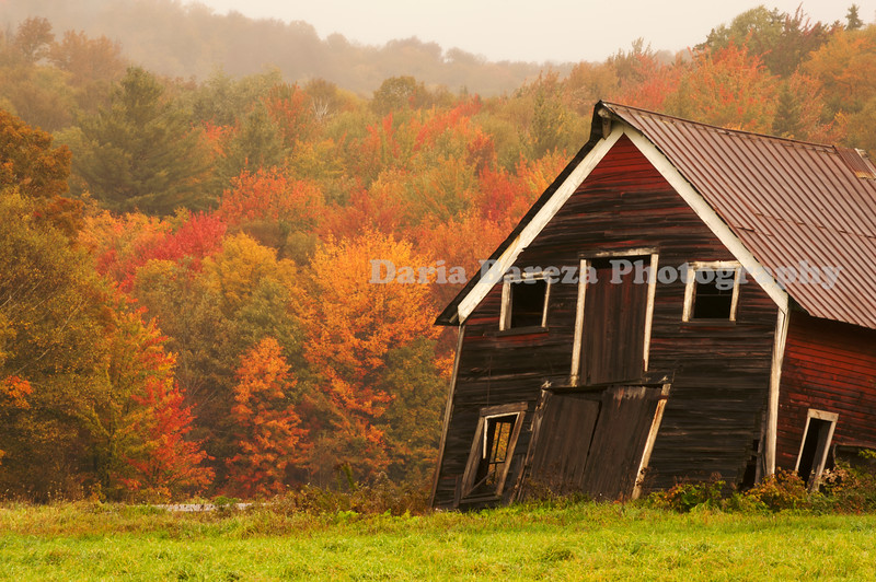 The Wonky Barn, Vermont