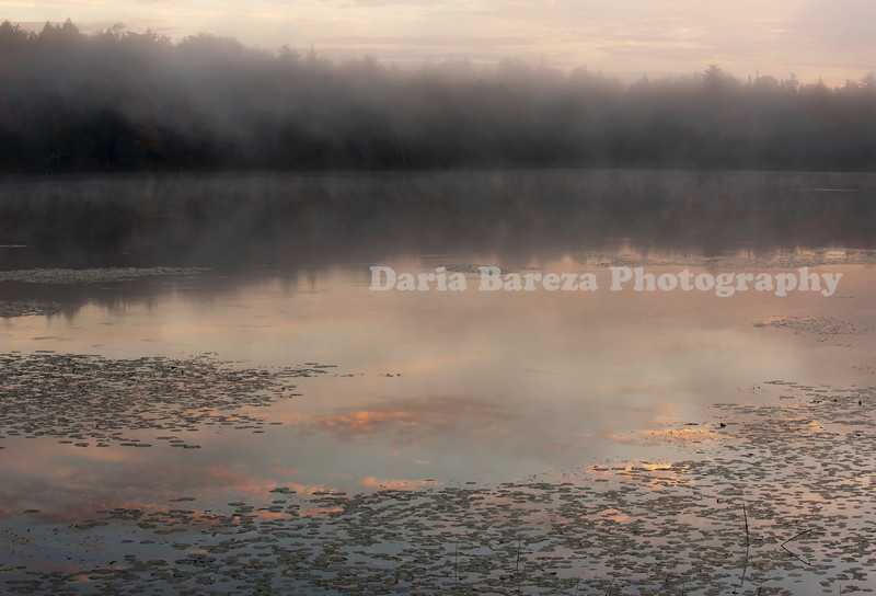 Dawn MIst, Vermont