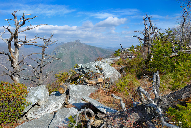 083 Shortoff View of Linville Gorge