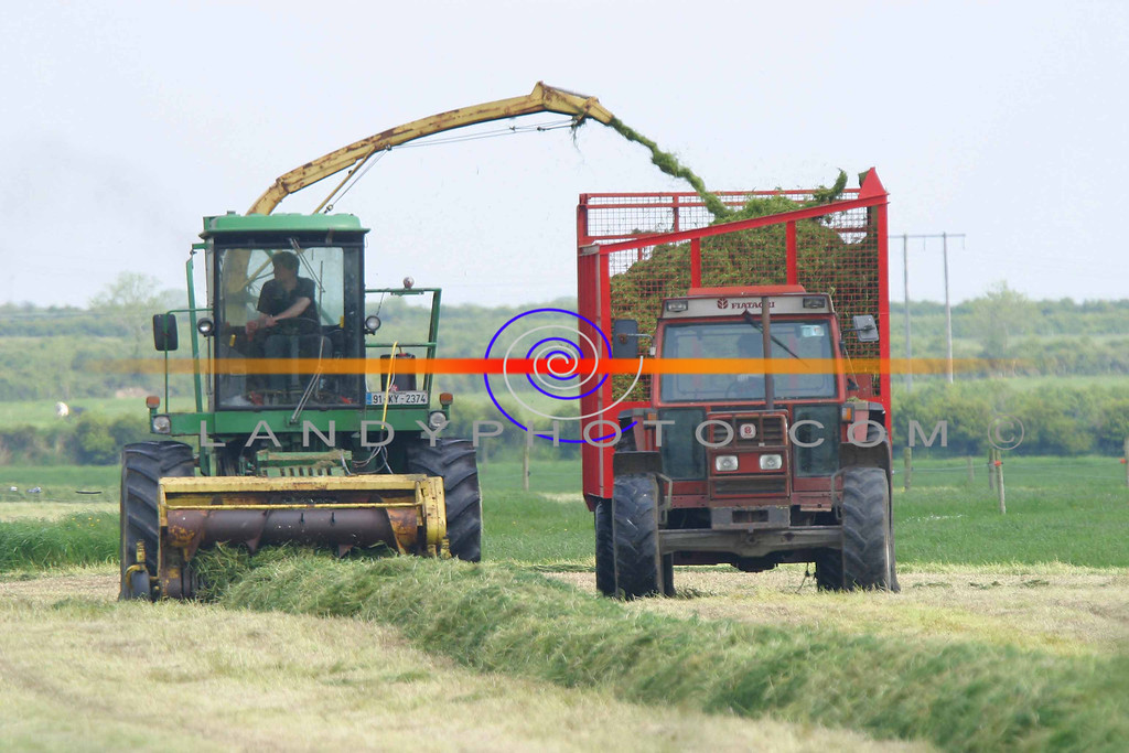 Silage cutting  at full swing in Lisselton as  the fine weather gives farmers a chance  to take advantage and bring home the first harvest.<br /> Pic Brendan Landy