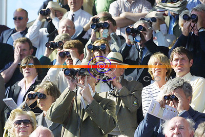 All Eyes on Racing as punter trainers owners alike watch their horses  in action at Listowel Races. Pic Brendan Landy