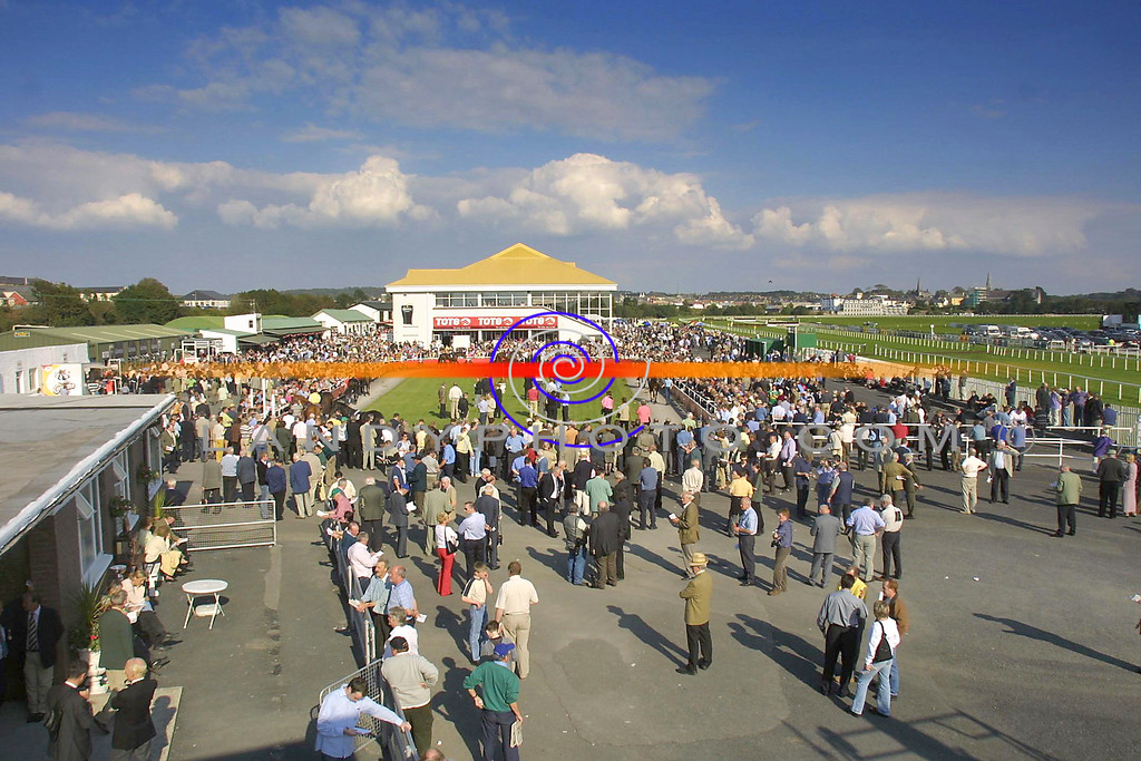 Listowel Races Ring