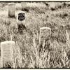 Gen Custer/T.W. Custer Markers