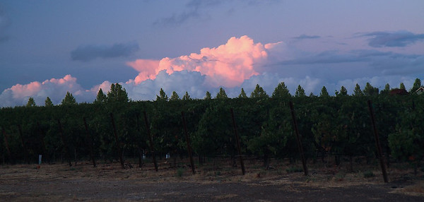 Livermore Sept 21st, 2013 33 of 40