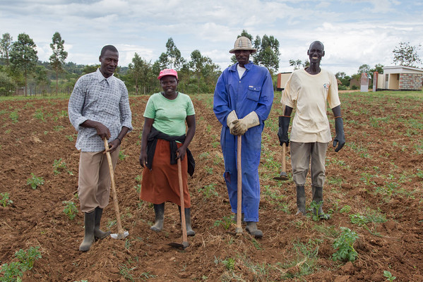 Four of the Living Room farmers take a break from mounding the potato crop.