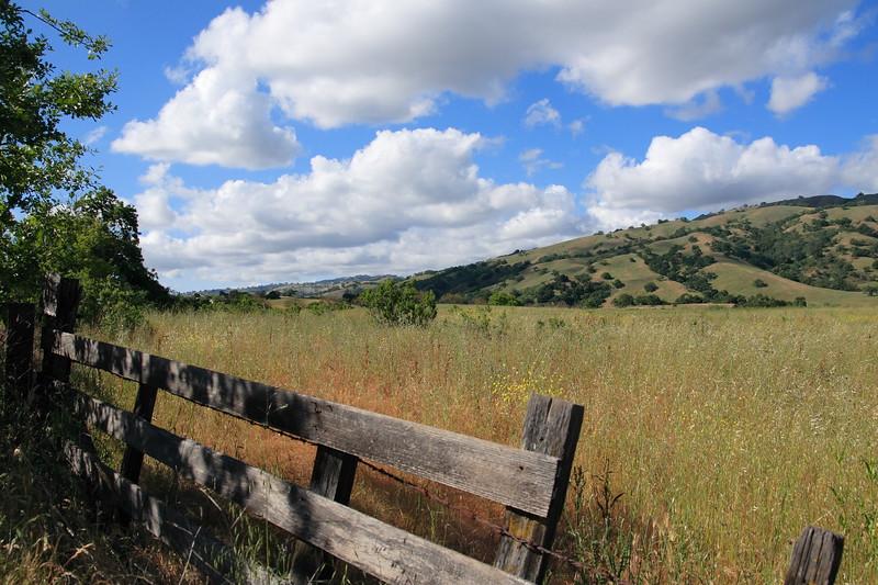 First Landscape, Halls Valley