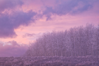 The light turns lavender after sunset...Taylor Mountain, Utah