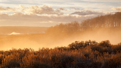 Golden fog on Taylor Mountain (Utah) at sunset....this is the top of the inversion that has covered the valley for days