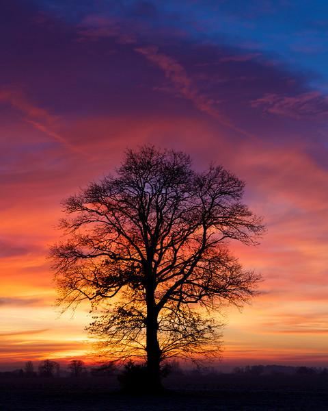 sunrise tamworth road 2014-01-12 at 07-59-13