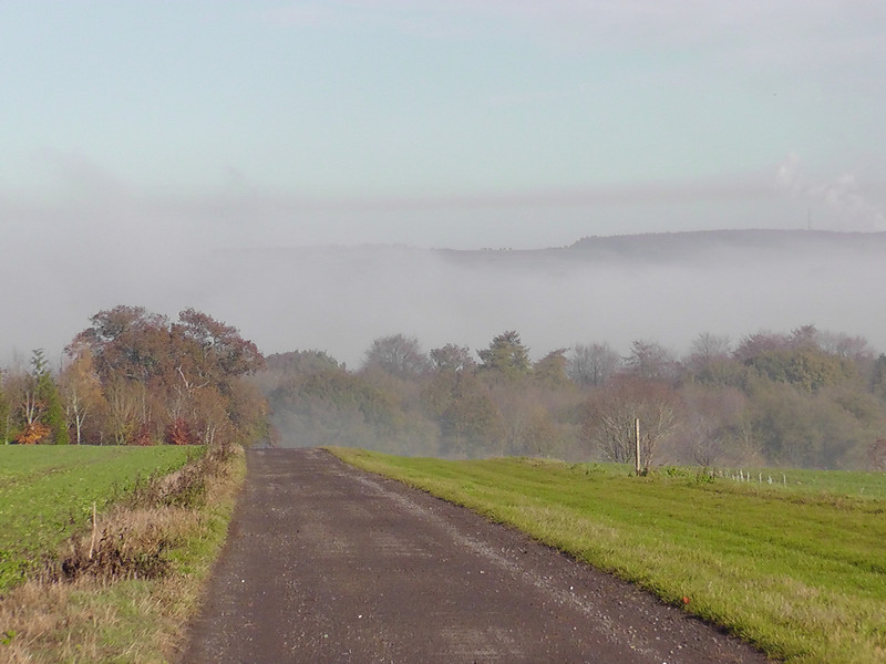 Ridgeway Down appears in the distance above the fog