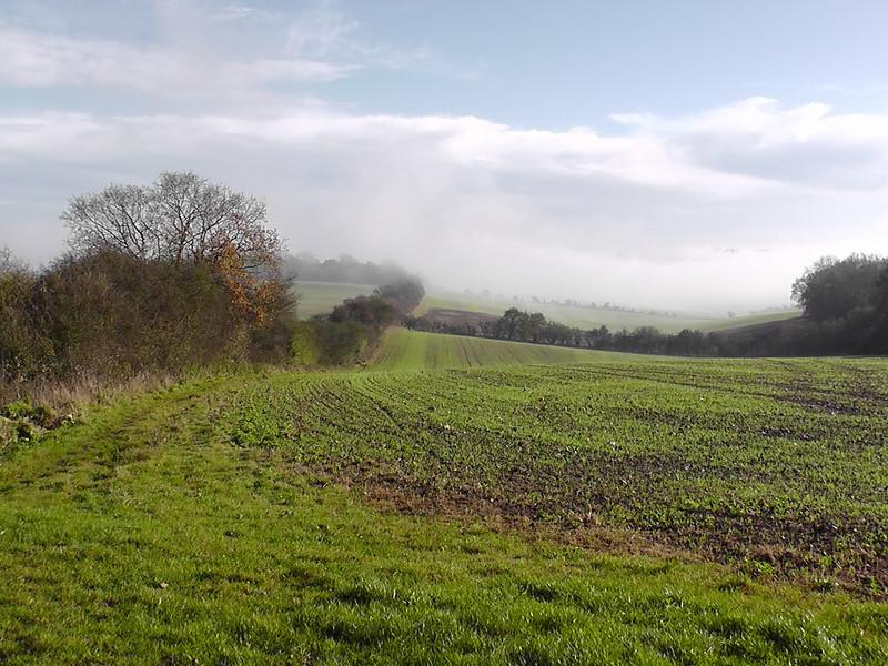 Kite Hill shrouded in mist
