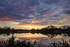 Lodi lake dawn2