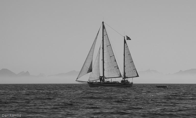 Colin Acher sailer in Vestfjorden