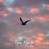 51  G Gull Sunset