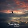 40  G Gull Sunset