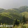 longsheng-20