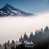 153  G Mt  Hood Above Fog Rising Sharp