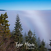 181  G Mt  Adams and Fog Bow