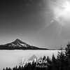 135  G Mt  Hood Above Fog Sharp BW