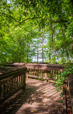 Lake Fausse Pointe State Park
