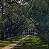 Oak Alley Plantation in Vacherie, Louisiana.