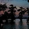 Sunset on Lake Martin in Louisiana