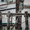 One lone bird, on the docks.