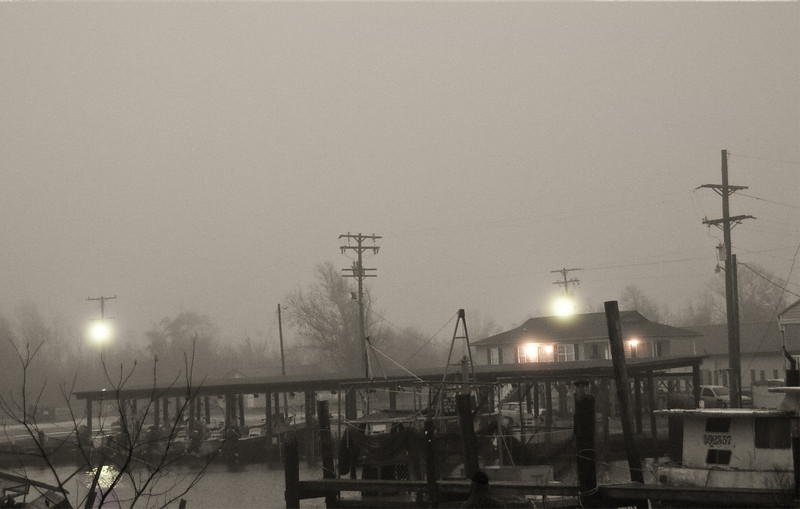 Foggy morning in Hackberry, Louisiana