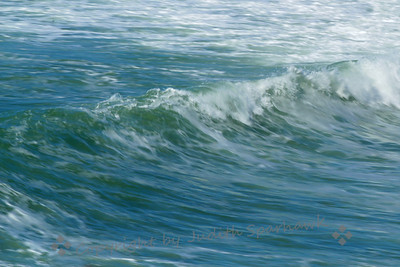 Point Loma Seascape ~ I was out on Point Loma, in the San Diego area, enjoying the birds and the sea air.  The tide was coming in, and it was a fairly high surf.  This photograph shows some of the white water from the surf, and one wave in motion.