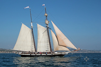 The California Under Sail ~ The sails were almost all up, and The California headed out of the harbor to sea