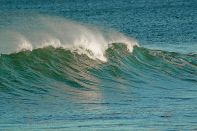 Wave in a Turquoise Sea ~ The ocean was a beatiful shade of blues, turquoise, greens, this last week in January.  Nice break between rainstorms.