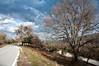 Mount Pelion (Thessaly) - Road to Keramidi<br />  Πήλιο, δρόμος προς το Κεραμίδι