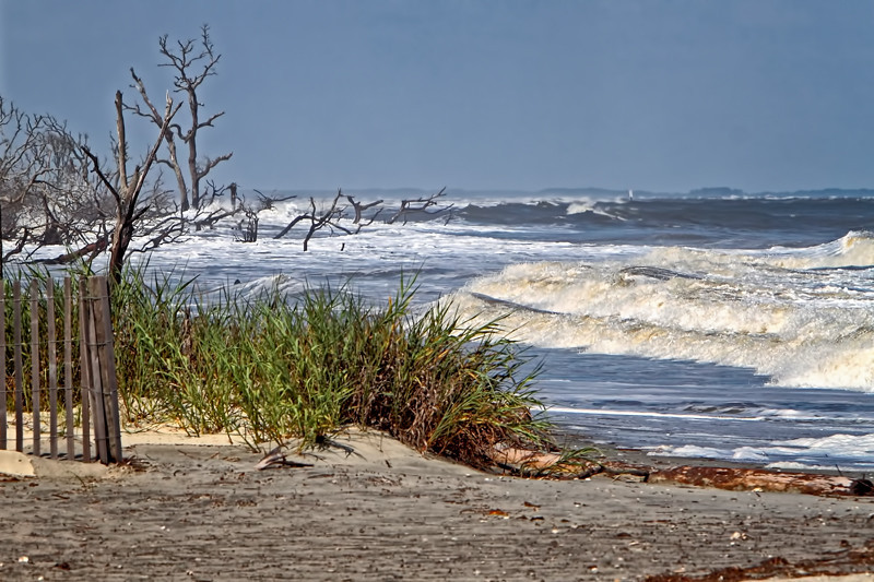 """Hurricane Earl Surf""<br /> Hunting Island State Park, SC"