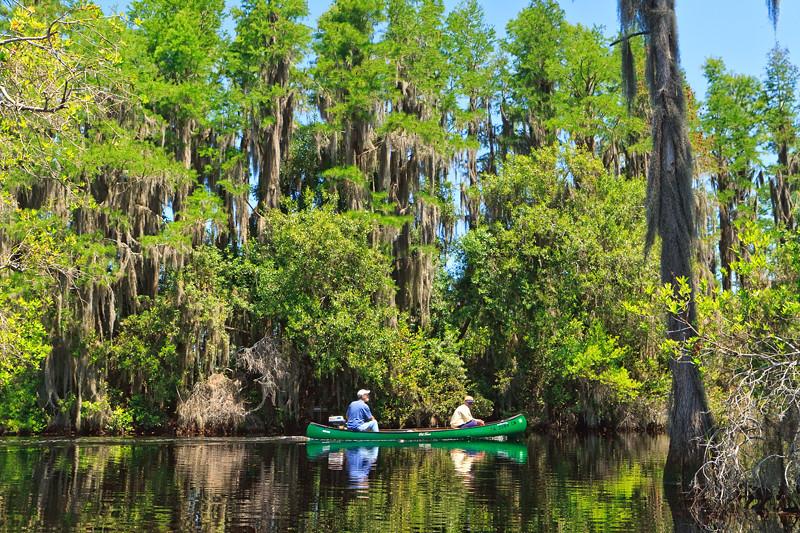 """Canoe Trip""<br /> Silver Springs, FL"