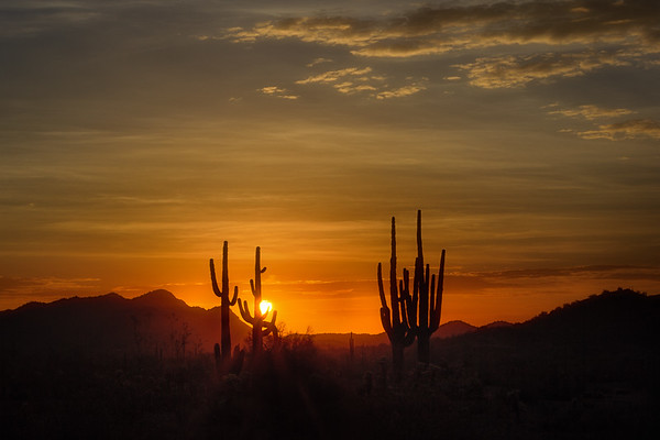 Central and Southern Arizona