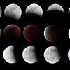 Mooncomp1