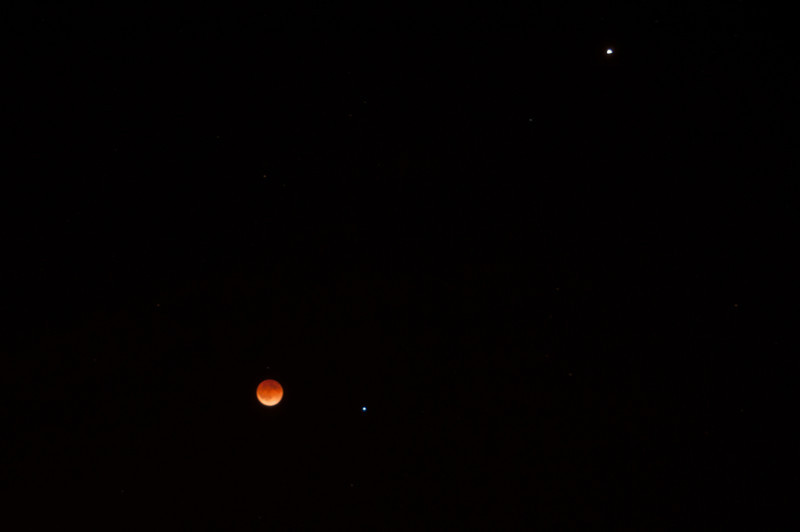 Blood Moon Sky