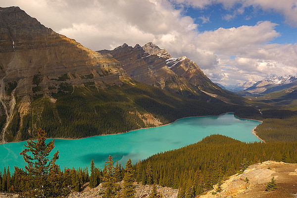 Peyto Lake, Icefields Parkway AB