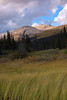 Evening Light, Icefields Parkway AB