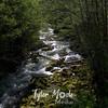 24  G Creek in Woods