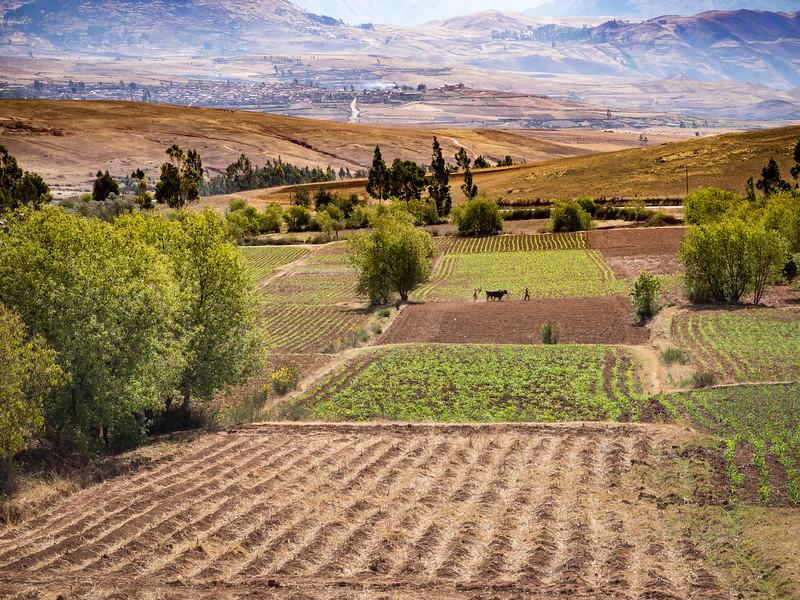 Farmland around Cusco,  Peru