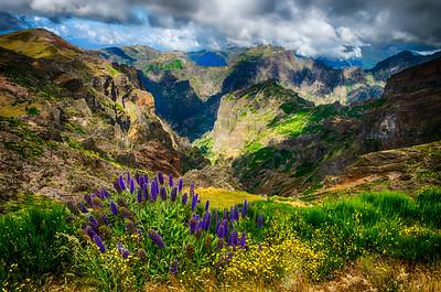 Pico Arieiro View