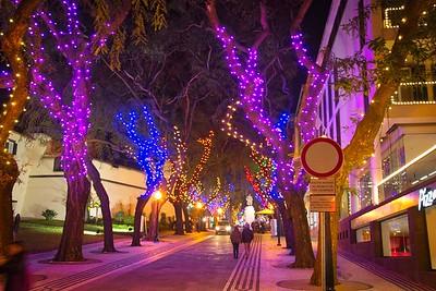 Illuminations of Funchal