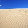 Sand Dune Magic