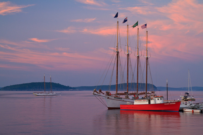 The Margaret Todd and Tiger Shark, Bar Harbor Maine