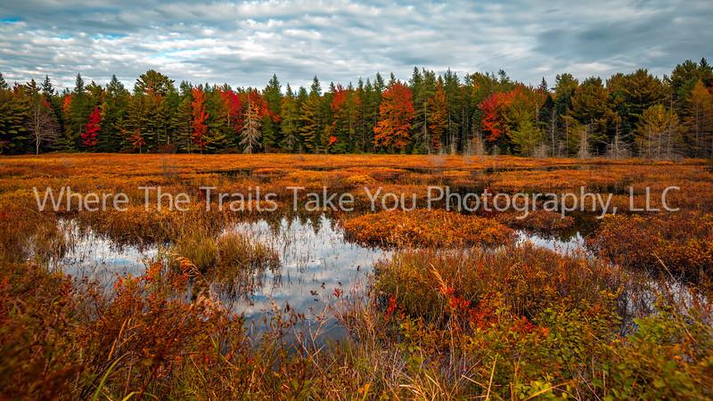 A Maine Autumn