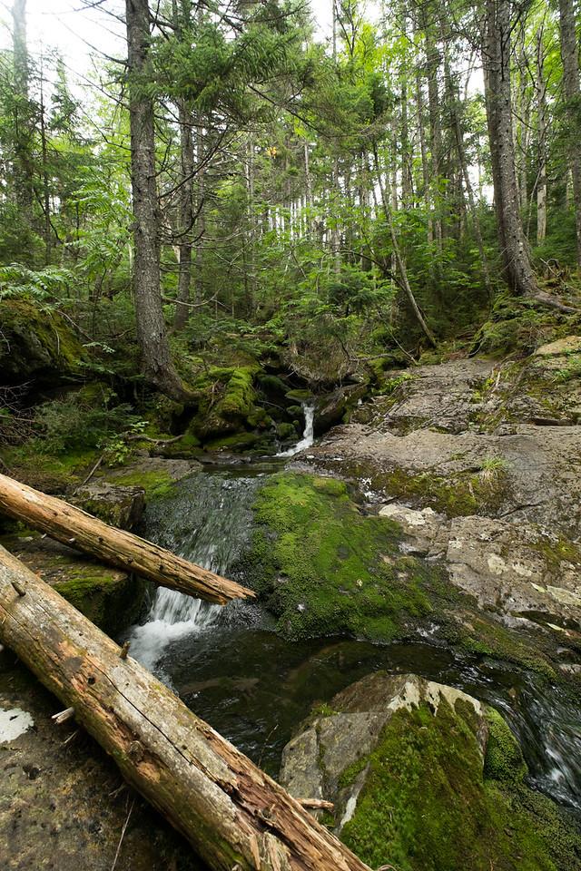 White Brook Trail, 100 Mile Wilderness